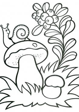 раскраска улитка на грибе скачать и распечатать раскраску
