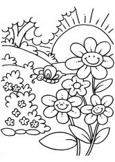 Раскраска Ромашки и бабочка