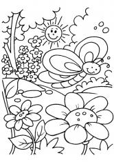 Раскраска Бабочка и ромашка