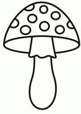 Раскраска под грибом