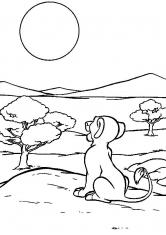 Раскраска Львёнок смотрит на закат