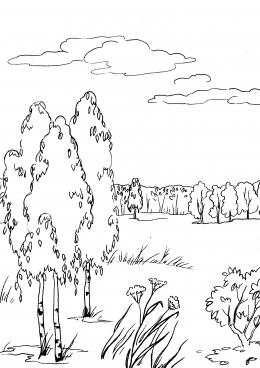 Пейзаж осень раскраска