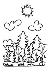 Раскраска Летний лес