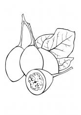 Распечатать раскраски корзина с фруктами
