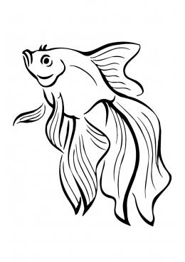 раскраски рыбы животные рыбы насекомые скачать и
