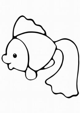 Раскраска Рыбка золотая из моря, скачать и распечатать ...