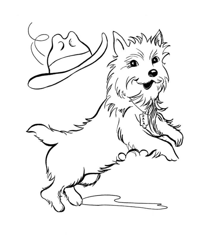 Собака в шляпе - razukrashki.com