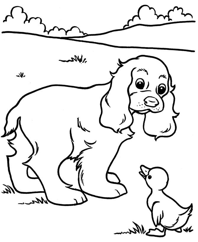 Собака и цыпленок - razukrashki.com