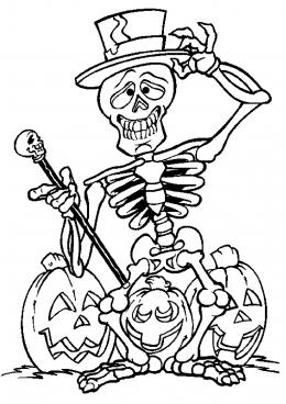 Скелет раскраски