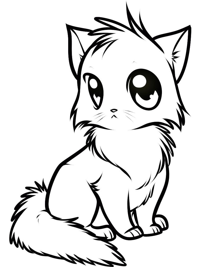 Аниме кошка раскраски