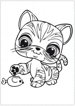 Раскраски анжела кошка распечатать