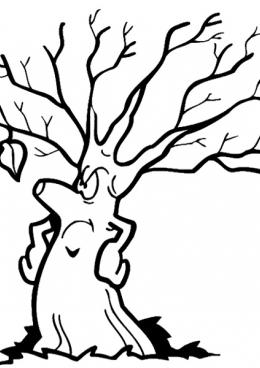 Раскраска Дерево и один листик, скачать и распечатать ...