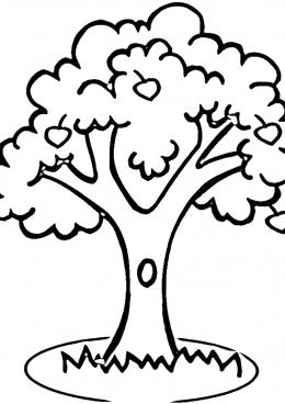 Раскраска Большое дерево с дуплом, скачать и распечатать ...