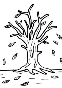 Изображения Дерево без Листьев Раскраска / tonpix.ru