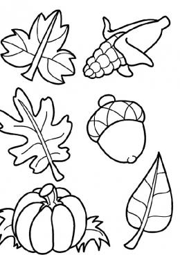 Раскраска Осенние листья и плоды, скачать и распечатать ...