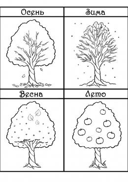 раскраска дерево в разное время года скачать и распечатать