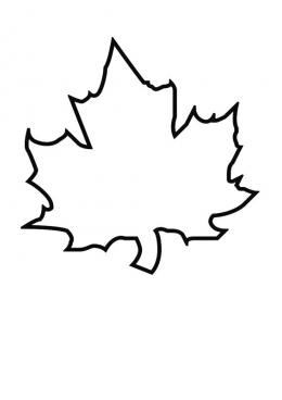 листочек клена картинка
