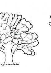 Раскраски Деревья | Цветы, природа, деревья, скачать и ...