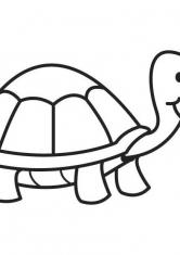 Раскраска Мудрая черепаха