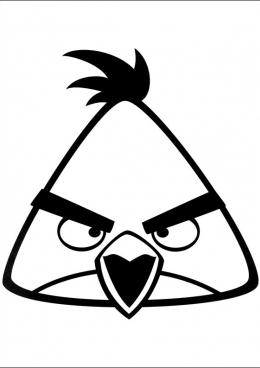 раскраски Angry Birds персонажи герои принцессы скачать