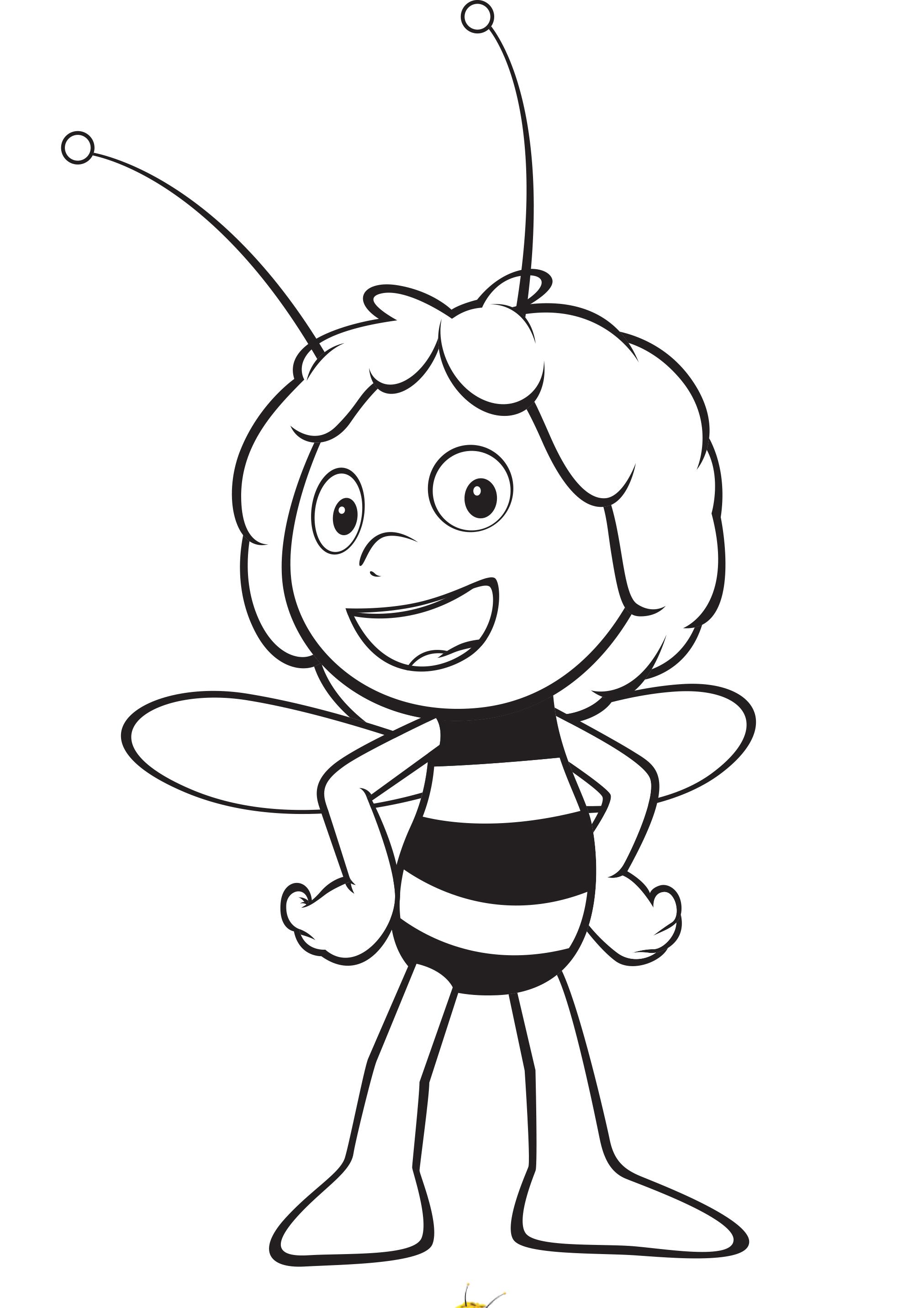 пчёлка майя фото