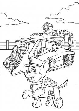 Раскраска Крепыш и Гонщик помогли собрать яблоки, скачать ...