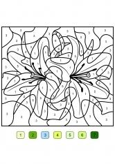 раскраски по цветам
