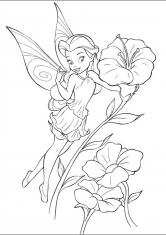 Раскраска Садовая фея Розетта