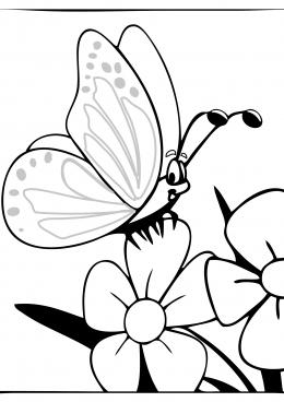 Раскраска Большая бабочка на цветах, скачать и распечатать ...