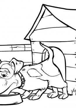 Раскраска Собака со двора Маши, скачать и распечатать ...