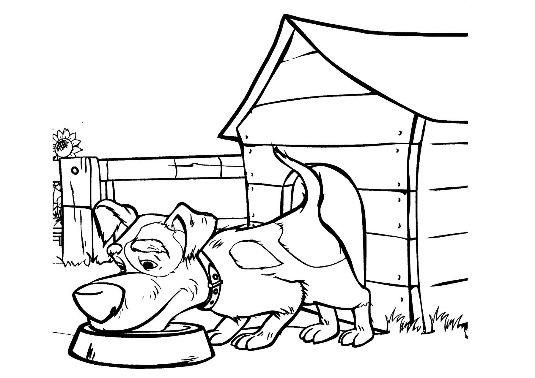 Собака со двора Маши - razukrashki.com