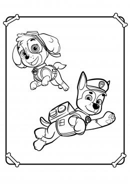 Раскраски щенячий патруль скай и гонщик