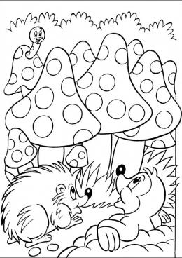 раскраски грибы фрукты овощи ягоды грибы скачать и