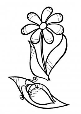 Раскраска Ромашка и жук, скачать и распечатать раскраску ...
