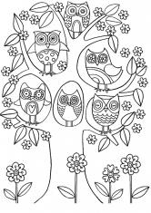 Раскраска Дерево и шесть сов
