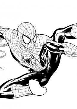 Раскраска Человек-паук передвигается на паутине, скачать и ...