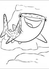 Раскраска Акула Судьба