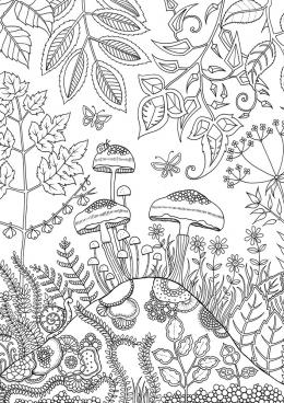 раскраска грибы на холме скачать и распечатать раскраску