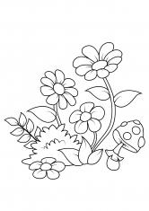 Раскраска Цветочки и мухомор
