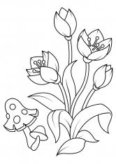 Раскраска Маленькие цветы и мухомор